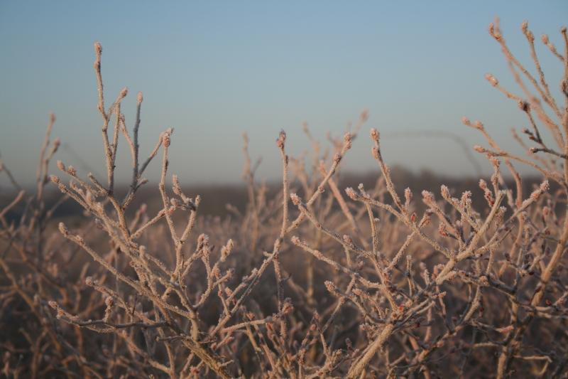 la ferme - hiver